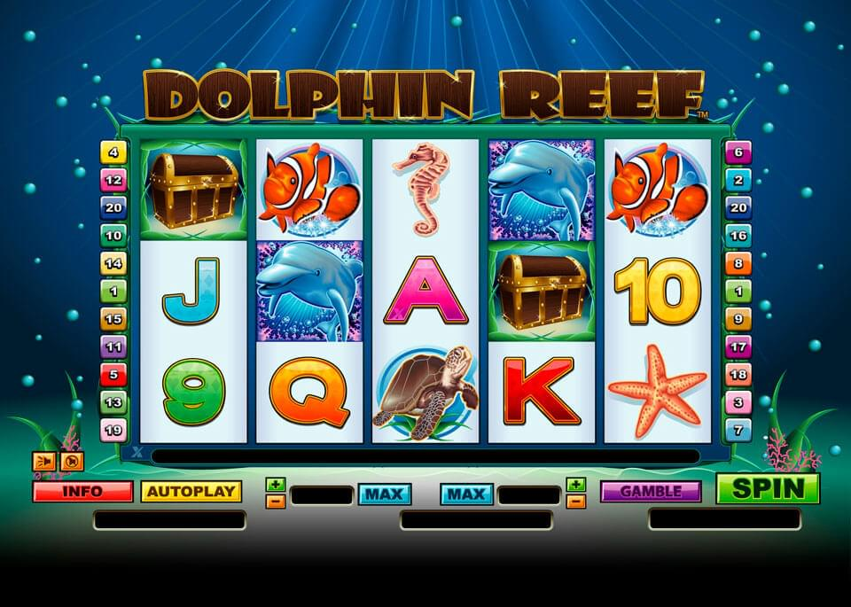 Dolphins Reef